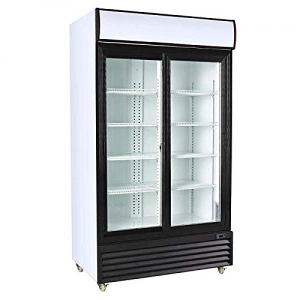 Visi Cooler Double Door 600ltr